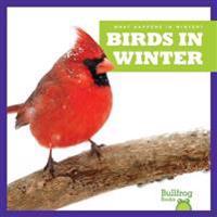 Birds in Winter