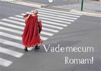 Vade Mecum Romam! 2017