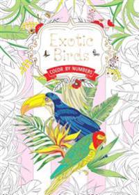 Exotic Birds Us: Color by Numbers