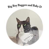 Big Boy Baggers and Baby D: The Story of the Big Bold Tom Cat and the Baby Who Became Best Friends