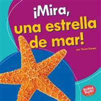 Mira, Una Estrella de Mar! (Look, a Starfish!)