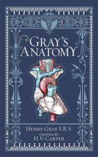 Gray's Anatomy (BarnesNoble Omnibus Leatherbound Classics)