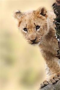 Aww, Look at the Little Lion Cub Journal: 150 Page Lined Notebook/Diary