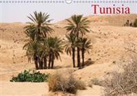 Tunisia 2017