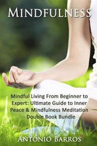 Mindfulness: Mindful Living from Beginner to Expert - Double Book Bundle