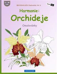 Brockhausen Omalovánky Vol. 6 - Harmonie: Orchideje: Omalovánky