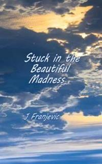 Stuck in the Beautiful Madness: Stories about Love, Sobriety, Killer Beavers and the Peloponnesian War