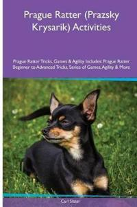Prague Ratter (Prazsky Krysarik) Activities Prague Ratter Tricks, Games & Agility. Includes