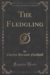 The Fledgling (Classic Reprint)