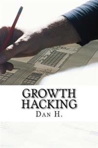 Growth Hacking: Best Methods to Attract More Costumers: Increase Your Web Traffic!