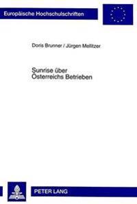 Sunrise Ueber Oesterreichs Betrieben: Die Adoption Thermischer Solaranlagen in Unternehmen Des Gewerbe Und Des Tourismus in Oesterreich. Eine Empirisc