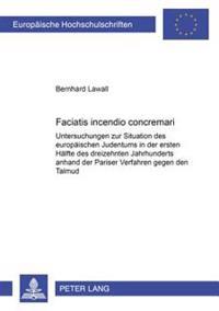 Faciatis Incendio Concremari: Untersuchungen Zur Situation Des Europaeischen Judentums in Der Ersten Haelfte Des Dreizehnten Jahrhunderts Anhand Der