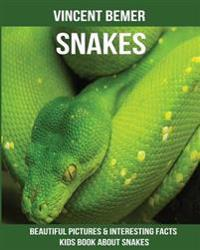 Snakes: Beautiful Pictures & Interesting Facts Kids Book about Snakes