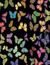 Beautiful Rainbow Butterflies 2017 Monthly Planner: 16 Month August 2016-December 2017 Calendar with Large 8.5x11 Pages