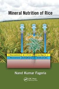 Mineral Nutrition of Rice. Nand Kumar Fageria