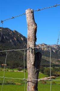 Barbed Wire Fence on the Range Journal: 150 Page Lined Notebook/Diary