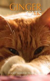 Ginger Cats Pocket Monthly Planner 2017: 16 Month Calendar