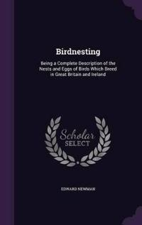 Birdnesting