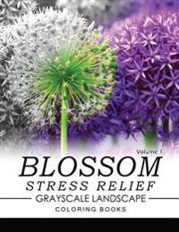 Blossom Stress Relief Grayscale Landscape Coloring Books Volume 1