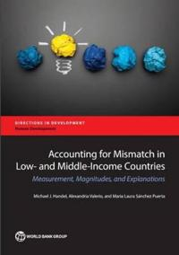 Accounting for education mismatch in developing countries