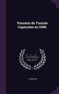 Fourmis de Tunisie Capturees En 1906.