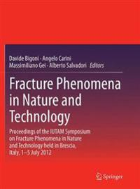 Fracture Phenomena in Nature and Technology