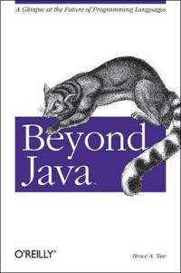 Beyond Java: A Glimpse at the Future of Programming Languages