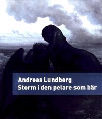 Storm i den pelare som bär : en berättelse