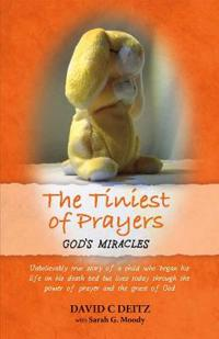 The Tiniest of Prayers: God's Miracles