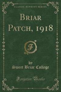 Briar Patch, 1918 (Classic Reprint)