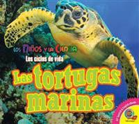 Las Tortugas Marinas (Sea Turtles)