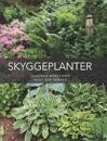 Skyggeplanter