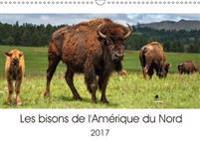 Les Bisons De L'amerique Du Nord 2017