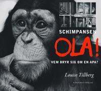 Schimpansen Ola : vem bryr sig om en apa?