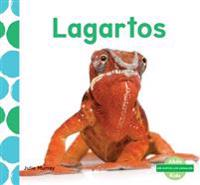 Lagartos (Lizards)
