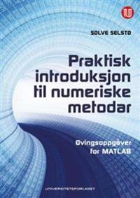 Praktisk introduksjon til numeriske metodar