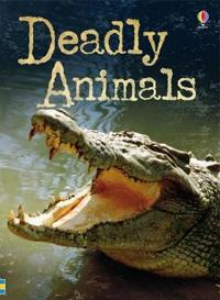 Beginners Plus Deadly Animals