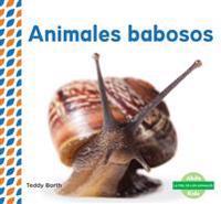 Animales Babosos (Slimy Animals )