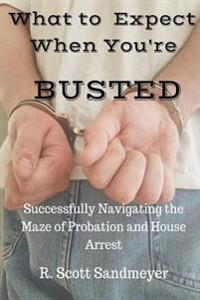 What to Expect When You're Busted: Successfully Navigating the Maze of Probation and House Arrest