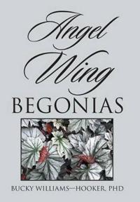 Angel Wing Begonias
