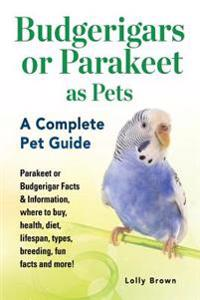 Budgerigars or Parakeet as Pets: Parakeet or Budgerigar Facts & Information, Where to Buy, Health, Diet, Lifespan, Types, Breeding, Fun Facts and More