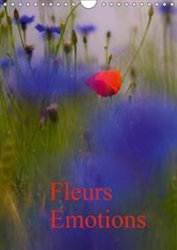 Fleurs Emotions 2017