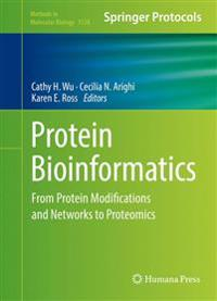 Protein Bioinformatics: From Protein Modifications and Networks to Proteomics