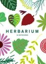 Herbarium: Notecards