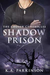 The Shadow Prison