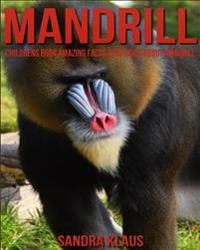 Childrens Book: Amazing Facts & Pictures about Mandrill