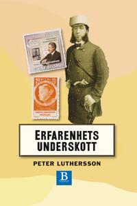 Erfarenhetsunderskott : noteringar om svensk 1800-talslitteratur