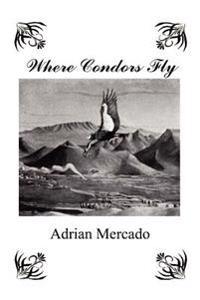 Where Condors Fly