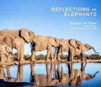 Reflections of Elephants