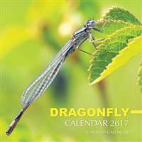 Dragonfly Calendar 2017: 16 Month Calendar